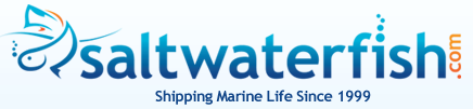 Saltwaterfish.com South Africa Coupon Codes