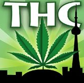 Toronto Hemp Company South Africa Coupon Codes