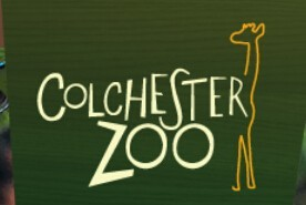 Colchester Zoo South Africa Coupon Codes