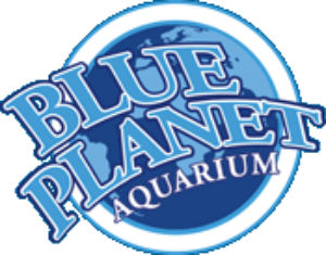 Blue Planet Aquarium South Africa Coupon Codes