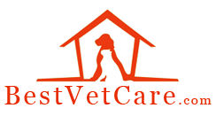 BestVetCare South Africa Coupon Codes