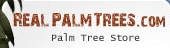 Real Palm Trees South Africa Coupon Codes